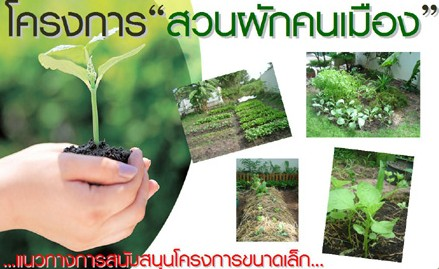 โครงการปลูกพืชผักสวนคนเมือง