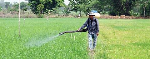 ทางรอด AEC กับเกษตรอินทรีย์