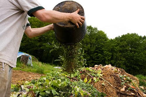 การเกษตรอินทรีย์เบื้องต้น